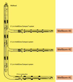 Figure 1 Multi lateral well